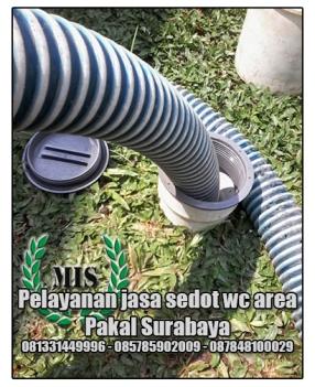 jasa-sedot-wc-pakal-kecamatan-pakal-surabaya