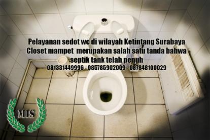 Layanan sedot wc Ketintang Surabaya