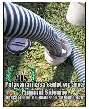 Layanan sedot wc Punggul Sidoarjo