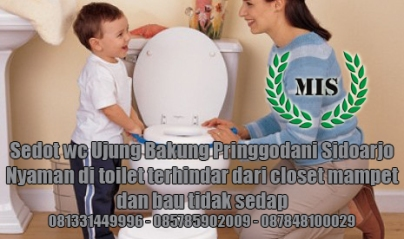 Layanan sedot wc Bakung Pringgodani Sidoarjo