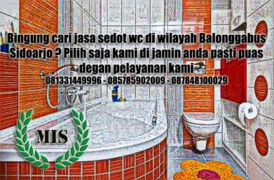 Layanan sedot wc Balonggabus Sidoarjo