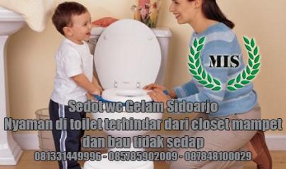 Layanan sedot wc Gelam Sidoarjo
