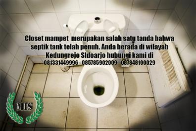 Layanan sedot wc Kedungrejo Sidoarjo
