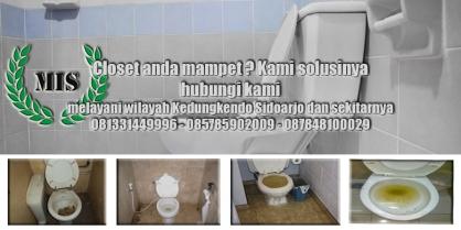 Layanan sedot wc Kedungkendo Sidoarjo