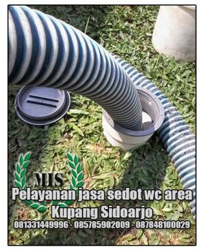 Layanan sedot wc Kupang Sidoarjo