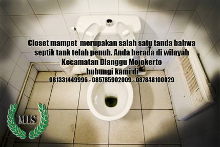 layanan-jasa-sedot-wc-dlanggu-kecamatan-dlanggu-mojokerto